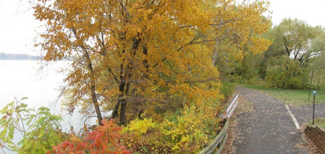 Niagara Falls State Park Riverway Robert Moses Parkway